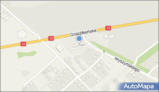 Orlen, 62-240 Rudki, 31  - Orlen - Stacja paliw