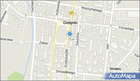 Sahara, 09-500 Gostynin, Rynek573 5  - Pizzeria