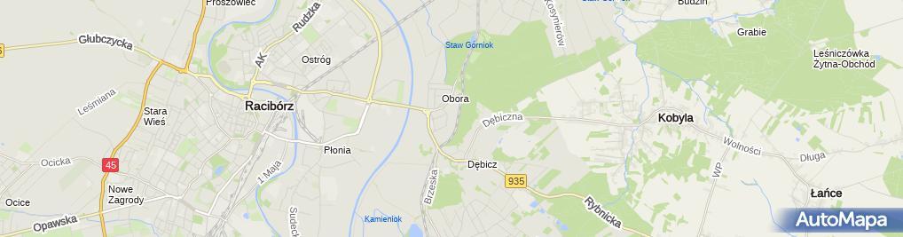 Zdjęcie satelitarne Castorama