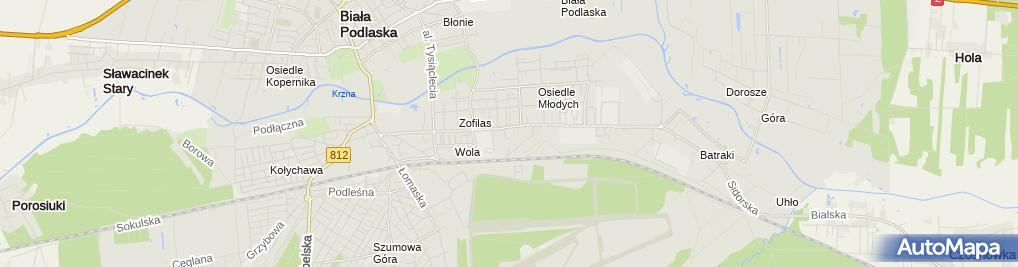 Zdjęcie satelitarne ASAJ Centrum elektryczne