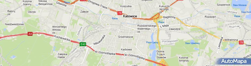 Zdjęcie satelitarne Warsztat Włosa Wojtasik Ilona