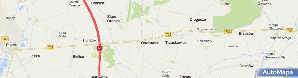 Zdjęcie satelitarne Trzaskowice (województwo łódzkie)