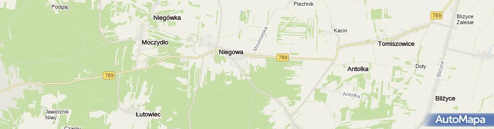 Zdjęcie satelitarne Z.P.H.U. PŁOTEK s.c.