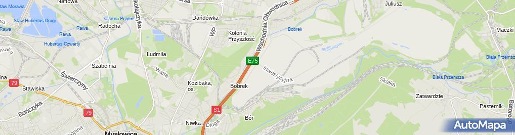 Zdjęcie satelitarne Raben Polska sp. z o.o. Oddział 2 w Sosnowcu