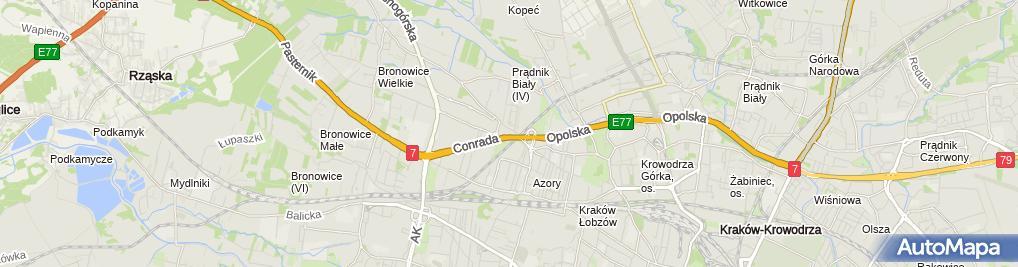 Zdjęcie satelitarne Skoda Porsche Kraków Bronowice