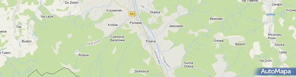 Zdjęcie satelitarne Ustroń Polana