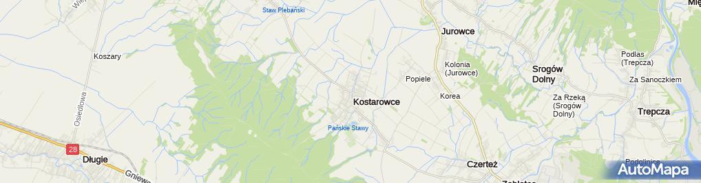 Zdjęcie satelitarne SP Kostarowce