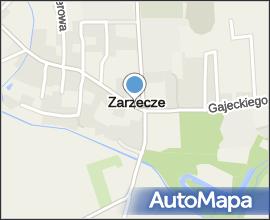 Zarzecze (powiat przeworski)-Pałac Dzieduszyckich