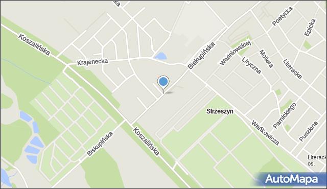 Poznań, Biskupińska, mapa Poznania