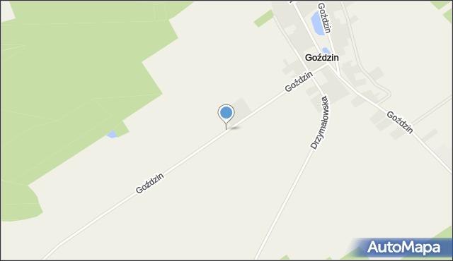 Rakoniewice, Goździn, mapa Rakoniewice