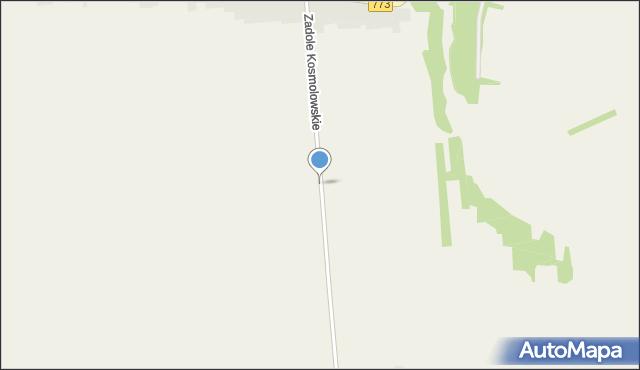 Kosmolów, Zadole Kosmolowskie, mapa Kosmolów