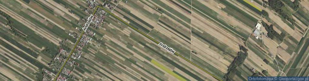 Zdjęcie satelitarne Andrzejów ul.