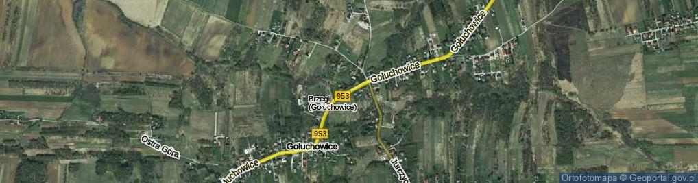 Zdjęcie satelitarne Gołuchowice ul.