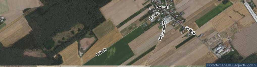 Zdjęcie satelitarne Goździn