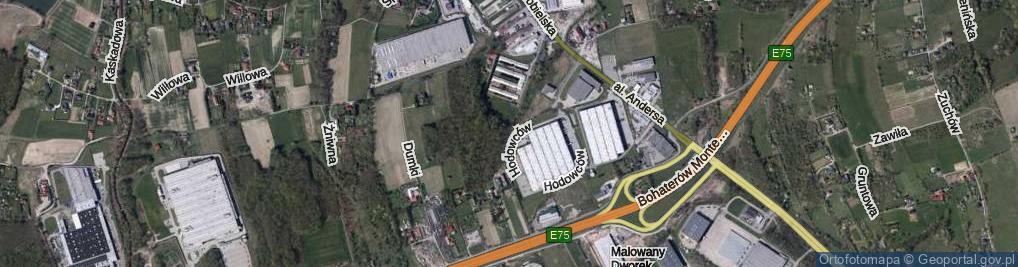 Zdjęcie satelitarne Hodowców ul.