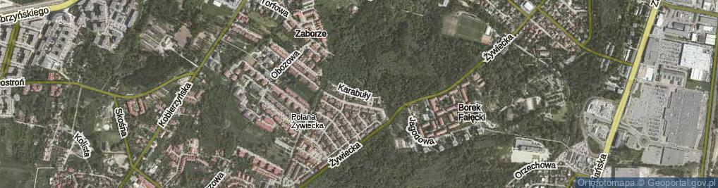 Zdjęcie satelitarne Karabuły Wojciecha, ks. ul.