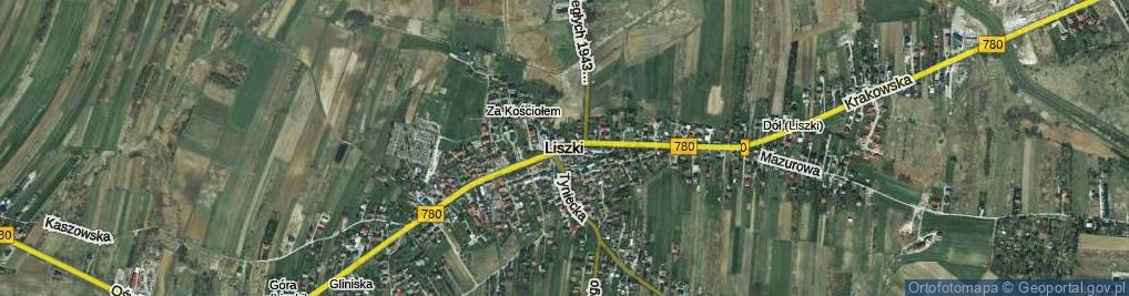Zdjęcie satelitarne Pustki ul.