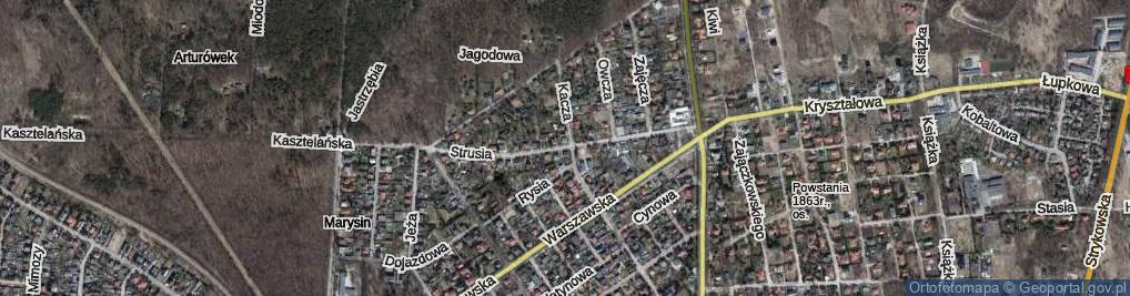 Zdjęcie satelitarne Strusia
