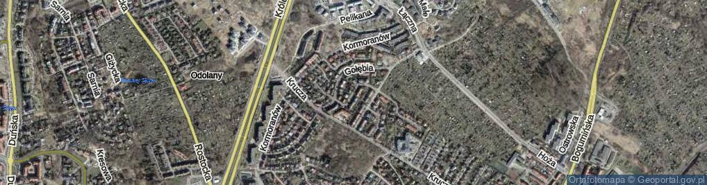 Zdjęcie satelitarne Strusia ul.