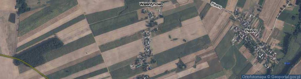Zdjęcie satelitarne Walentynowo ul.