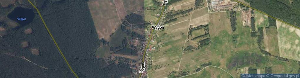 Zdjęcie satelitarne Wygon