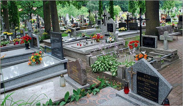 Hajnowka cmentarz katolicki, 17-200 Hajnówka, Armii Krajowej  - Zdjęcia