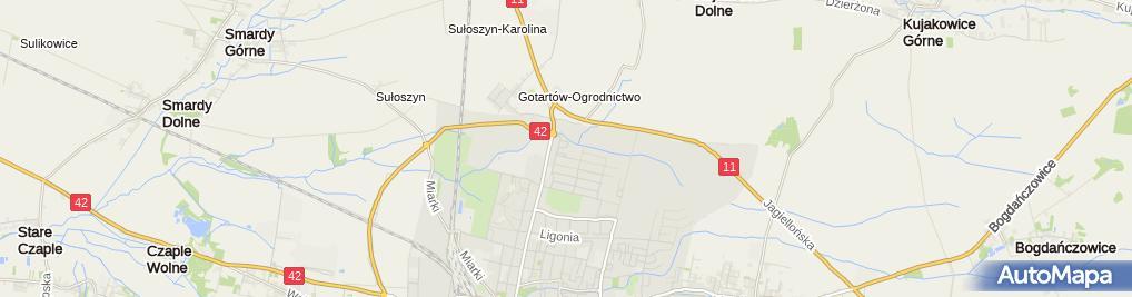 Zdjęcie satelitarne Galeria Miodowa