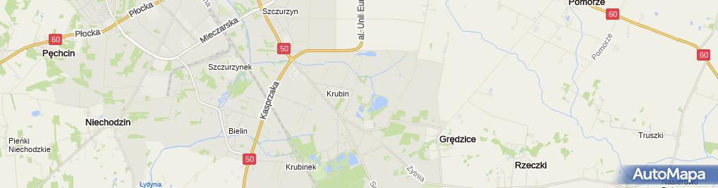 Zdjęcie satelitarne Dom Pomocy Społecznej