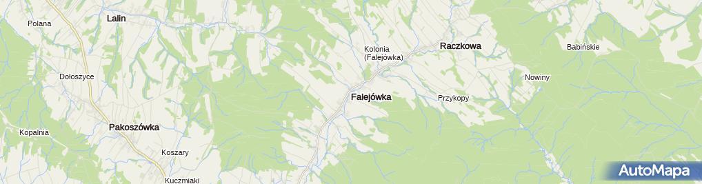 Zdjęcie satelitarne Dwór Wolińskich
