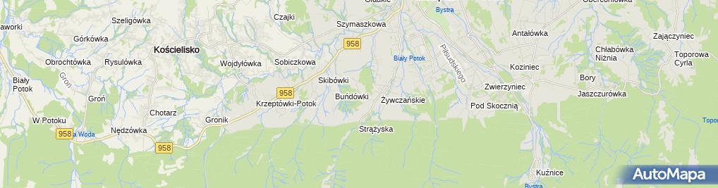 Zdjęcie satelitarne Tatra Chalet