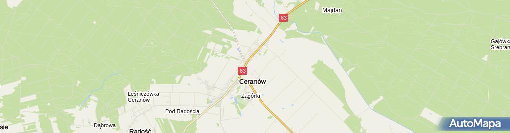 Zdjęcie satelitarne Felicjanki