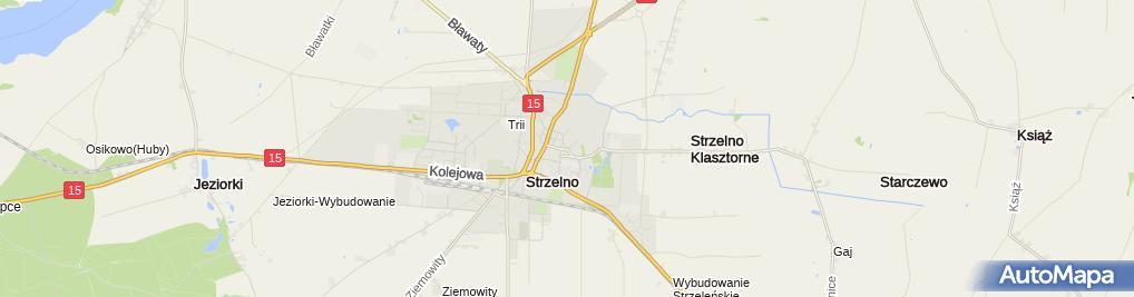 Zdjęcie satelitarne Strzelno, pomnik sw. Wojciecha