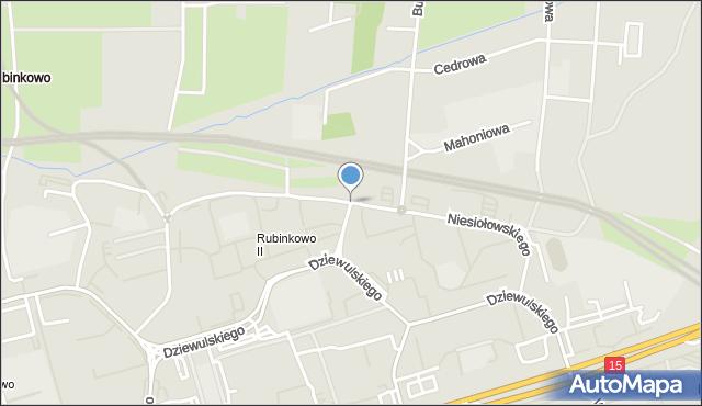 Toruń, Niesiołowskiego Tymona, mapa Torunia