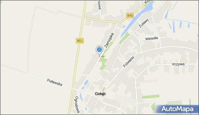 Gołąb, Zamojska, mapa Gołąb