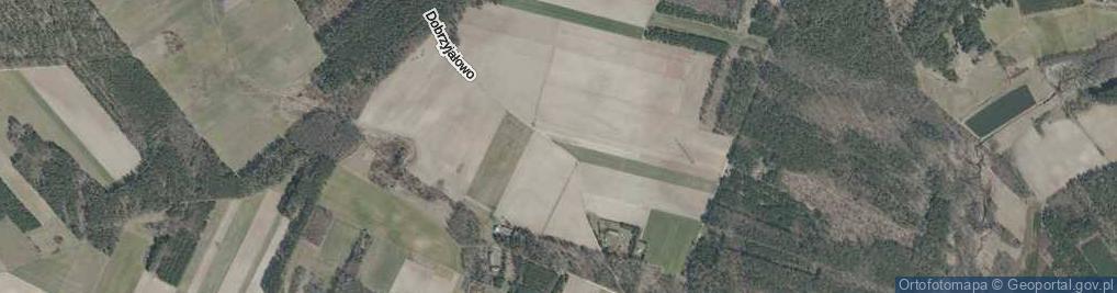Zdjęcie satelitarne Dobrzyjałowo ul.