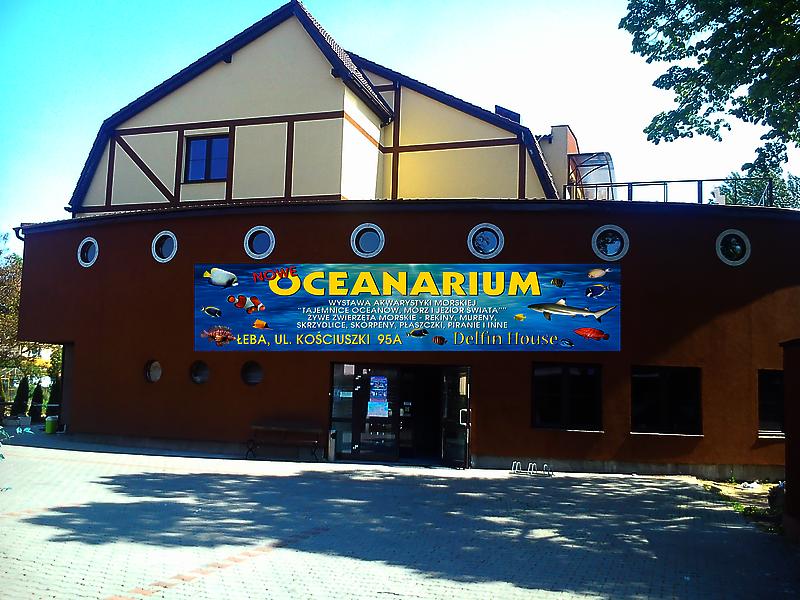 Pokoje Apartamenty Łeba Oceanarium Dolphin House, Łeba 84-360 - Ośrodek  wypoczynkowy, godziny otwarcia, numer telefonu